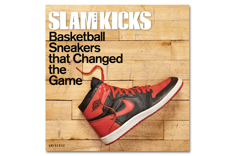 slam-kicks-book