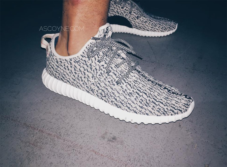 Кроссовки adidas Originals Yeezy 350 Boost Low Turtle / Gray AQ 4832