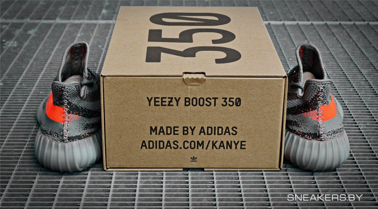 Adidas Yeezy 350 Boost Box