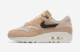 nike-air-max-1-pinnacle-mushroom-839608-201