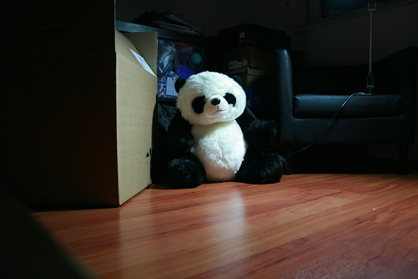 panda in the box