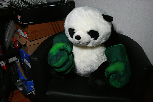 panda with hulk hands