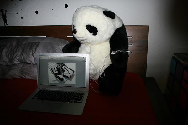 panda with ipod and macbook