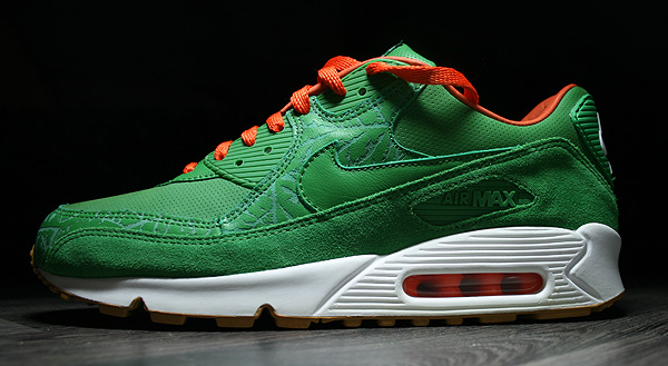 nike air max homegrown state
