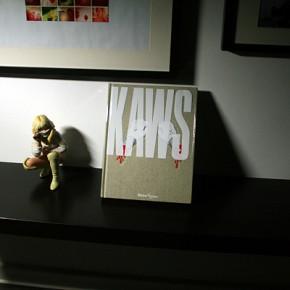 KAWS Book...
