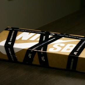 Nike SB Dunk Book...