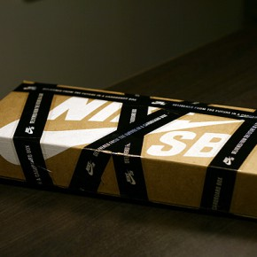 nike sb dunk book cardboard