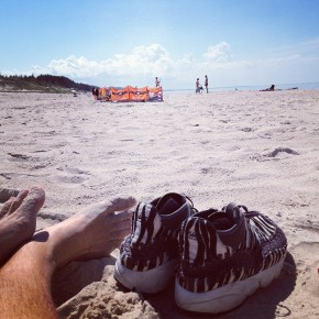 zebra-footscape-beach