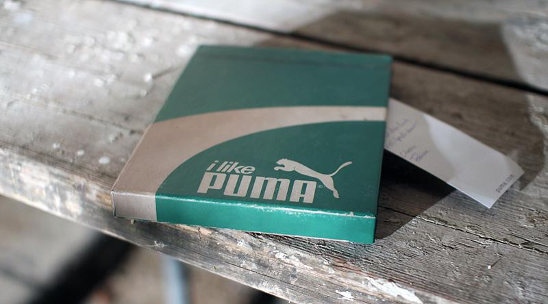 pumarunningbook