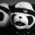 Adidas x Jeremy Scott Panda Sneaker...
